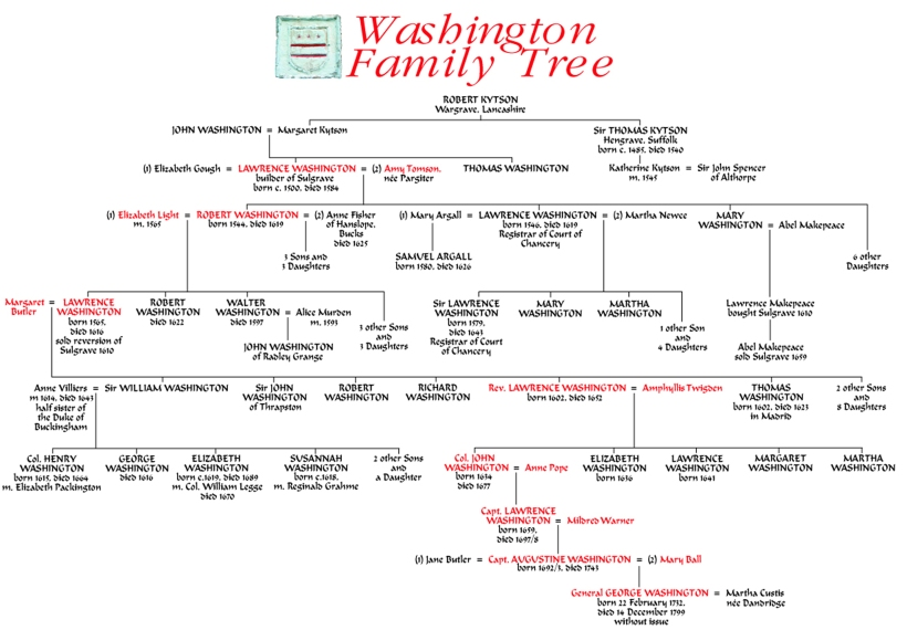 WashingtonTree4Final
